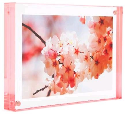 Color Edge Magnet Frame by Canetti-Pastel Rose 4x6 inch