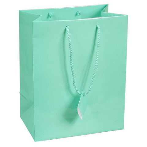 10 pcs Large Fancy Robin's Egg Blue Glossy Finish Shopping Paper Gift Sales Tote Bags with Blank Message Tag 7.75 x 4 x 9.75