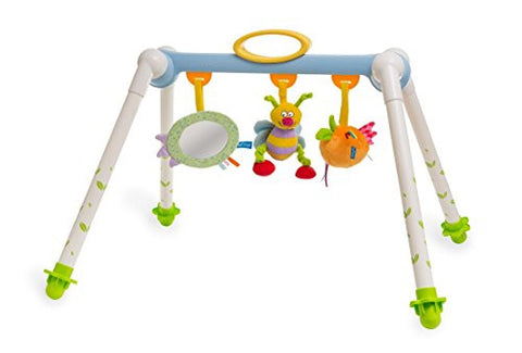 Taf Toys Take-To-Play Baby Gym | Baby's All Time Entertainment, Baby Mirror, Detachable Toys, Foldable, Easy Storage And Mobility, No More Child Boredom, Easier Child Development And Parenting