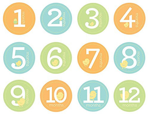 Pearhead First Year Monthly Milestone Photo Sharing Baby Belly Stickers, 1-12 Months, Neutral