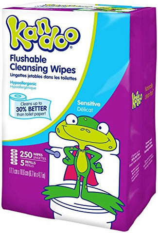 Kandoo Flushable Biodegradable Potty Training and Kids Cleansing Wet Wipes with Moisturizing Lotion Refills, Sensitive, 250 Count