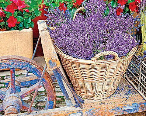 Springbok Basket of Lavender Jigsaw Puzzle, 1000-Piece