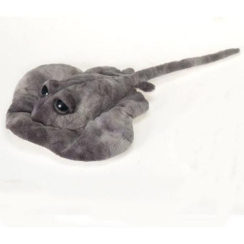 "13.5"" Big Eye Sting Ray with Picture Hangtag"