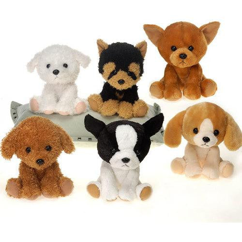 "5"" 6 Assorted Tea Cup Puppies - Boston"