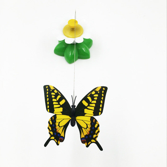 Butterfly and Daisy Pet Teaser Toy