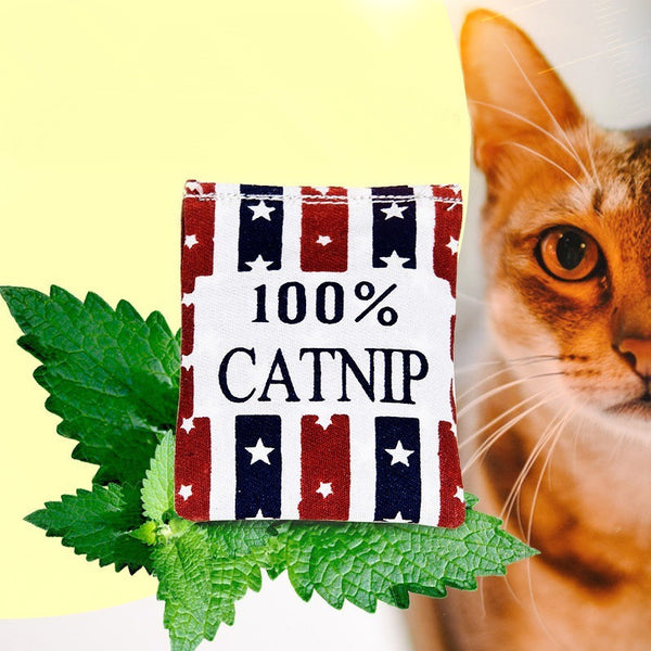 100% Linen Square Catnip Bag