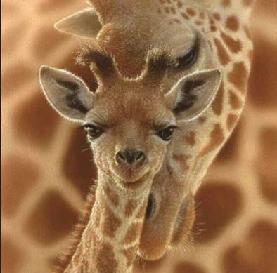 Life lessons from a Baby Giraffe