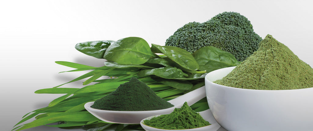 Why I've replaced coffee with Spirulina!