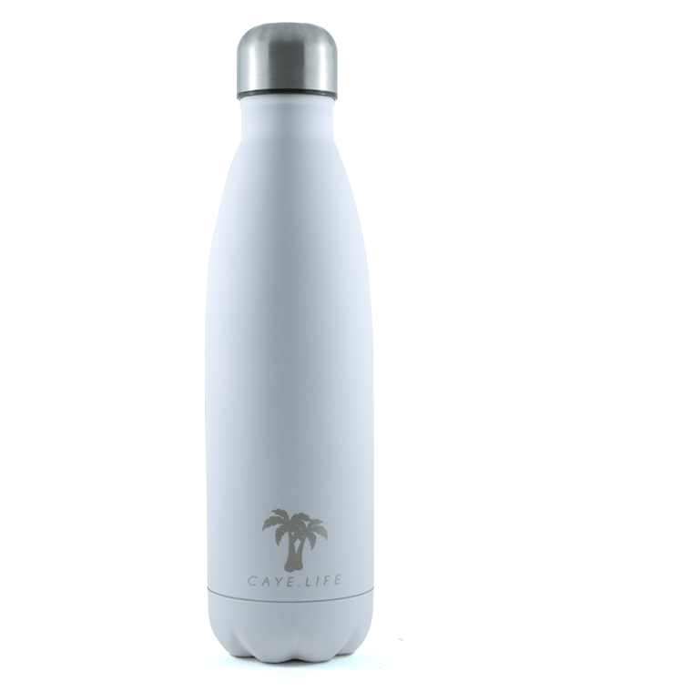 Insulated Drink Bottle - White Matte (2 sizes available)
