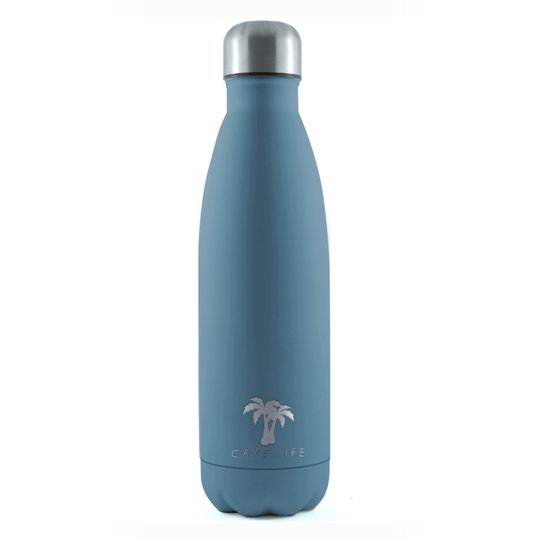 Insulated Drink Bottle - Matte Teal (2 sizes available)