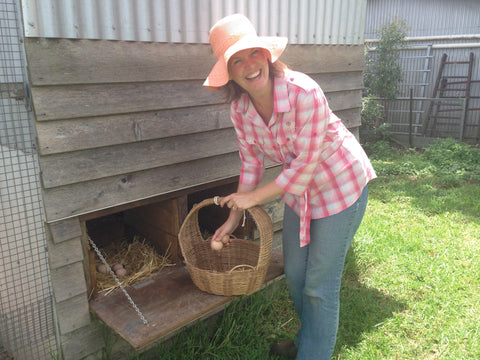 Katrina MacAllan collecting eggs from her chickens.