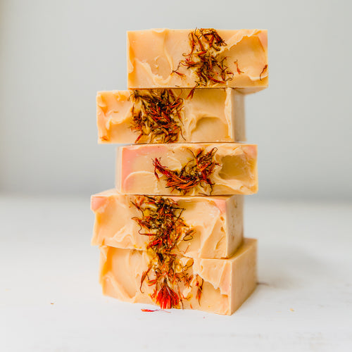 Orange Spice Soap - Apple & Radish