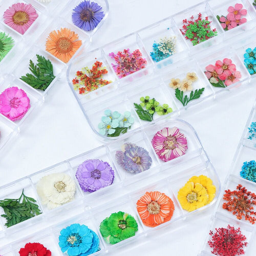 Small Pressed Dried Flowers for resin embellishments, nail art