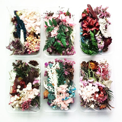 Dried Flowers for Jewelry Making - Random Mix