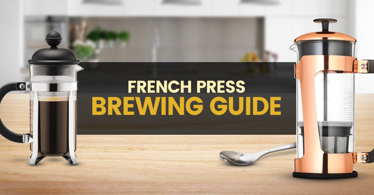 French Press Brewing Guide Barista Warehouse