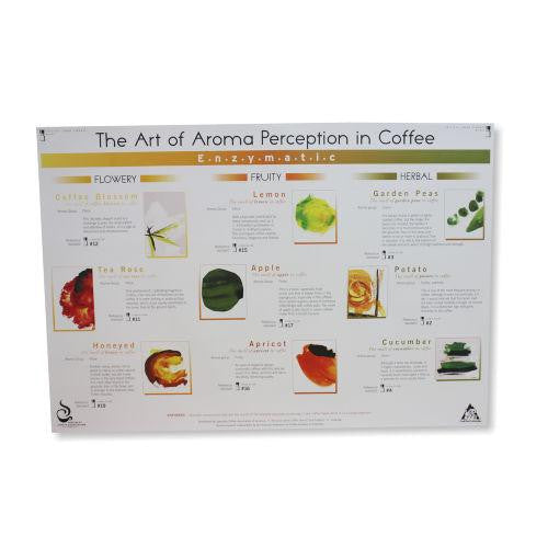 Art Of Aroma Enzymatic Poster - SCAA, Educational Resources, SCAA - Barista Warehouse