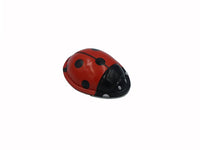 Tin Toy - Clicker - Ladybird, Frog