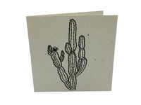 Greeting Card - Cactus - Plantable