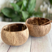 WILD & FREE COCONUT BOWLS | JUST BLENDS