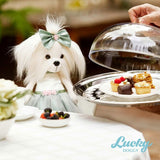 Miss Yorkie Elegance: The New Hybrid Stuffed Animal and Doll for Girls