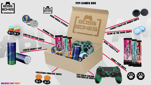 January's Gamer Box (PS4)