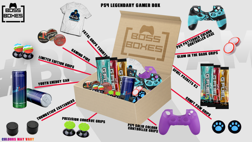 January's Legendary Gamer Box (PS4)