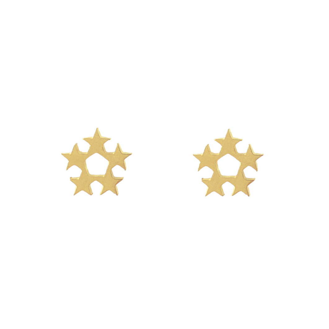 Star Wreath Stud Earrings