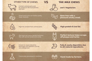 yak milk chews are the best chews for dogs