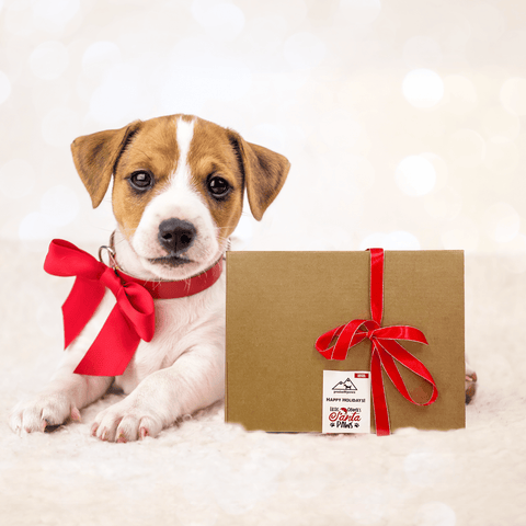 Peaksnpaws Gift Box
