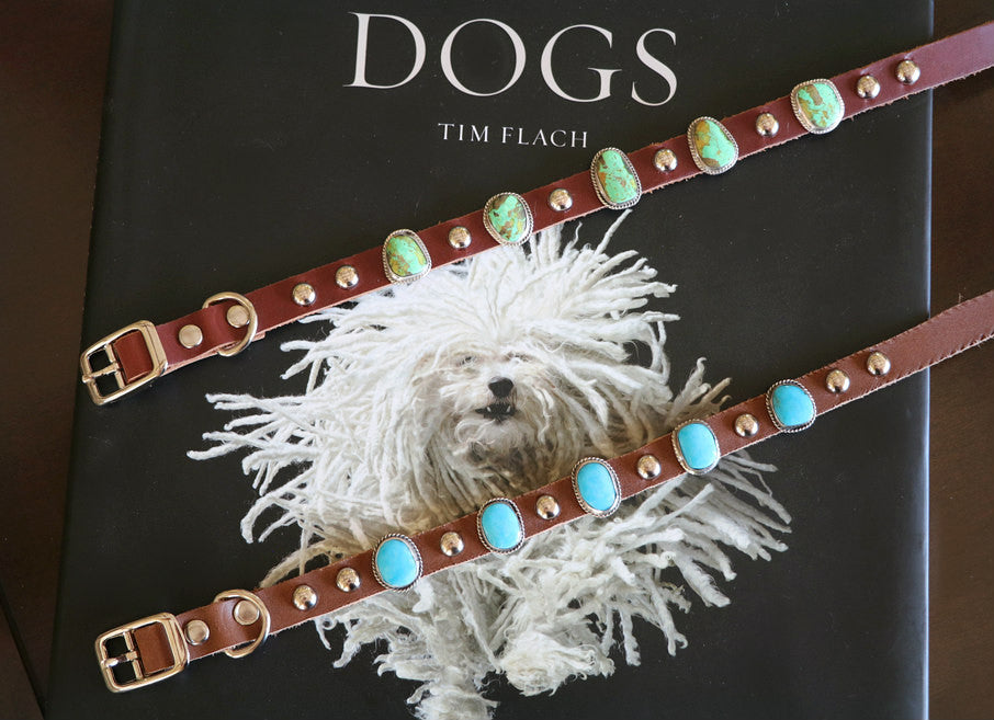 Native American Turquoise Dog Collar