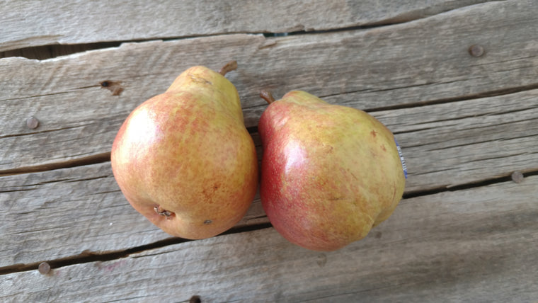 Organic Red Bartlett Pears (/lb)
