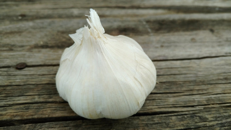 Organic Garlic (/head)