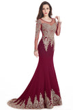 Long Sleeve Mermaid Evening Dresses