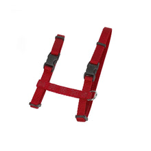 COASTAL ADJUSTABLE FIGURE H CAT HARNESS RED