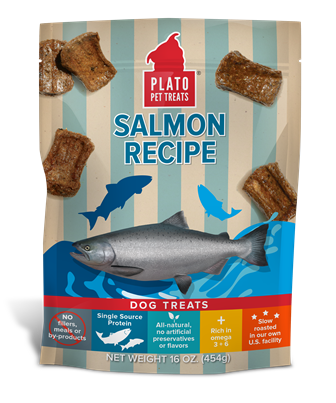PLATO SALMON RECIPE TREATS