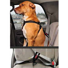 EZY DOG CAR RESTRAINT