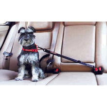 EZY DOG CLICK ADJUSTABLE CAR RESTRAINT