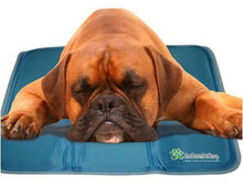 COOL PET PAD SELF COOLING CUSHION