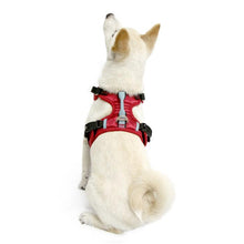 GOOBY PIONEER HARNESS RED