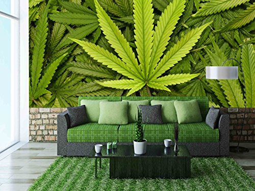 wall26 Big Marijuana Leaf Close Up with Texture Background of