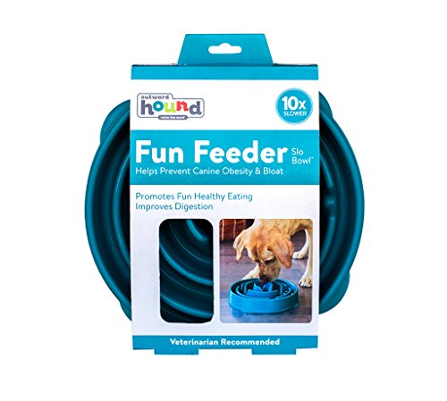 Slow Feeder Dog Bowl Fun Feeder Stop Bloat Bowl for Dogs by Outward Hound, Large, Teal - Dans Awesome Store