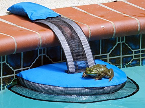 Swimline 70200SL FrogLog Critter Saving Escape Ramp - Dans Awesome Store