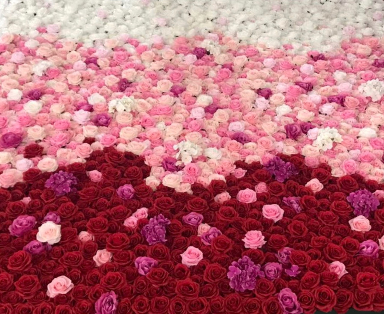 R.V Flower Wall Hire
