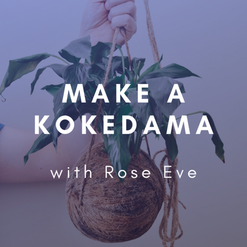 KOKEDAMAS Thursday 2 April 6-7:30pm