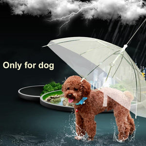 Built-in Leash Portable Pet Dry in Rain Umbrella
