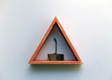 "15"" Reclaimed Wood Triangle Shelf - Tropical Collection"