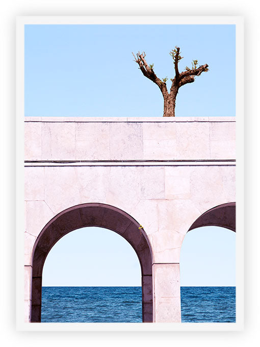 A Tree Above The Sea