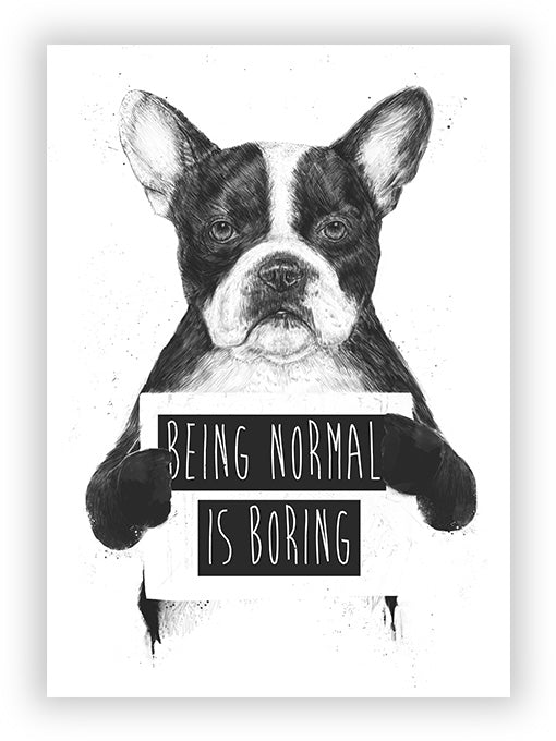 Being Normal is Boring