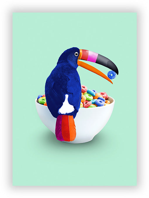 Cereal Toucan