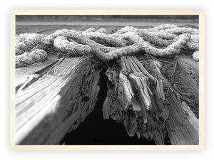 Deck and Rope